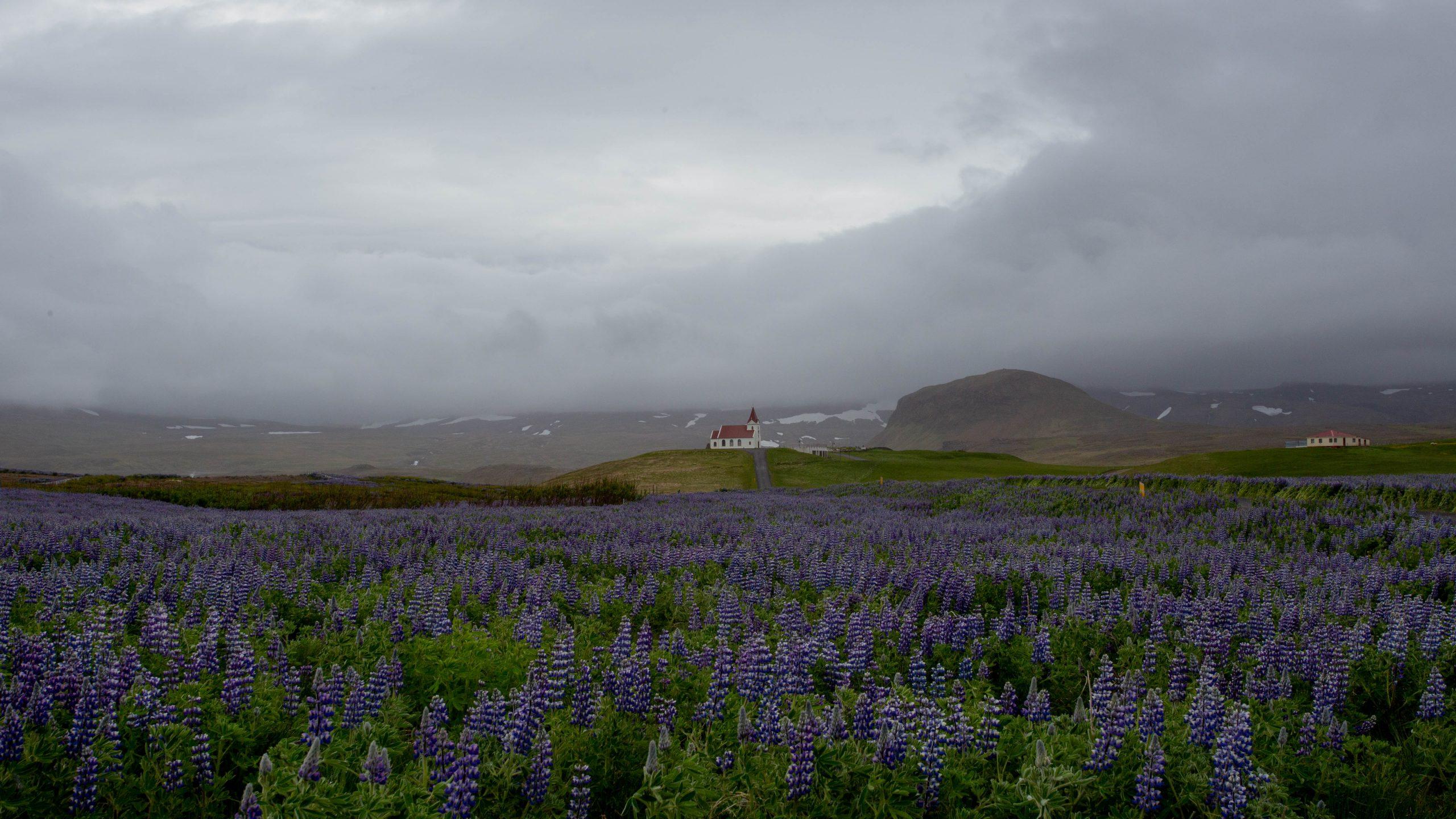 Island 2015 – Die erste Etappe