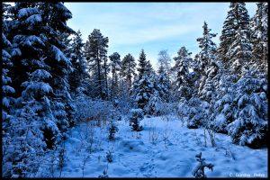 Arktische Kälte…