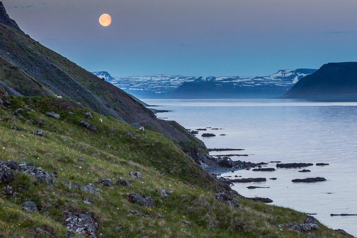 Island 2015 – Die Westfjorde – Teil II